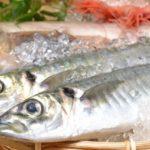 白身魚・赤身魚・青魚の違い!ダイエットにいいのは?
